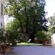 I5154_20210429120422_garden3.jpg