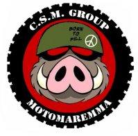 [Immagine: logo11022015130848.jpg]